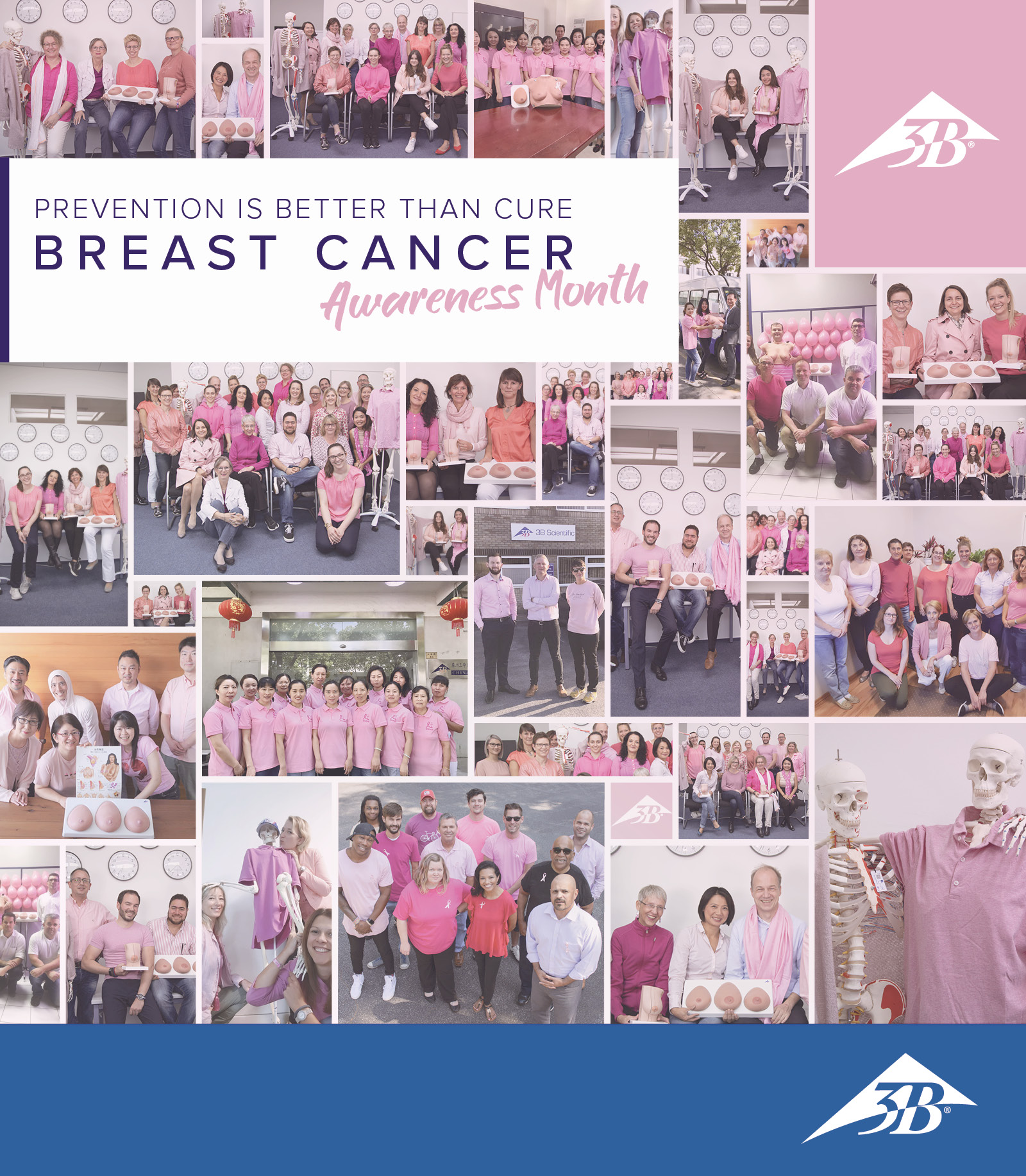 Breast_Cancer_Awareness_Press_Section_Banner_768x880_LOGO2.jpg